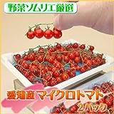 【送料込】愛知産 マイクロトマト 2パック ミニトマト/極小トマト