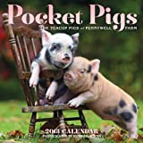 Pocket Pigs 2013 Wall Calendar: The Teacup Pigs of Pennywell Farm