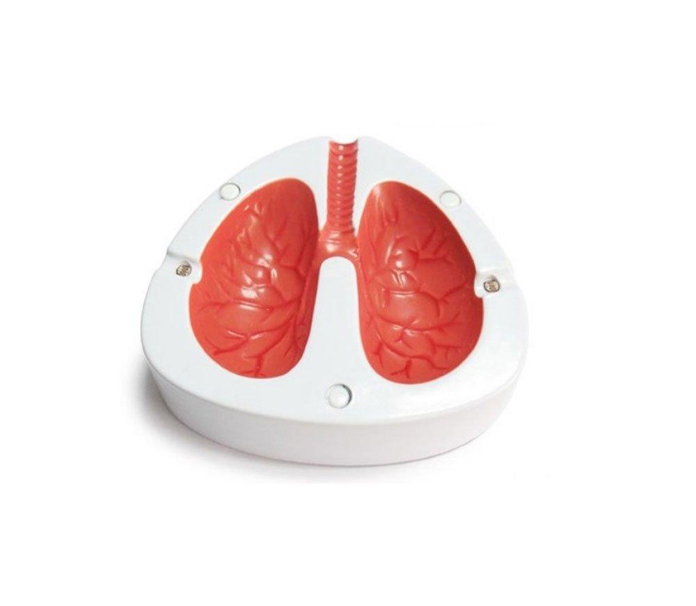 Lung Ashtray