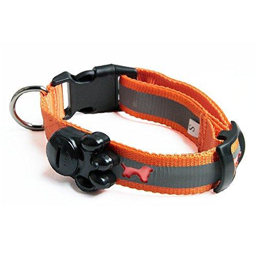 夜のお散歩も安心 たいせつなペットを守る 蛍光反射&LEDライト内蔵ペットカラー (オレンジ, S)