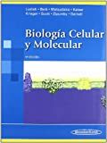 img - for Biologia celular y molecular/ Molecular Cell Biology (Spanish Edition) book / textbook / text book