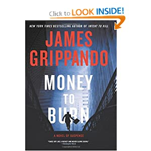Money to Burn - James Grippando