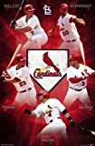St. Louis Cardinals® - Team 13 Poster Print (22 x 34) at Amazon.com