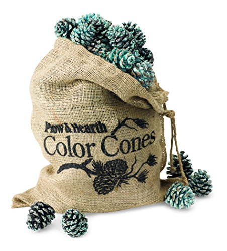 Color-Changing Fireplace Color Cones - 2 lb. Refill Bag (Gas Pine Cones compare prices)