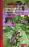img - for Taschenlexikon der Wildbienen Mitteleuropas book / textbook / text book
