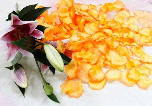 Bundle Monster Wedding Party Favor Centerpiece Decoration Silk Rose Flower Petal Confetti 2000pc - Orange with Dark Orange Tips