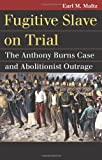 Fugitive Slave on Trial: The Anthony Burns Case and Abolitionist Outrage (Landmark Law Cases and American Society)
