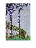 Especial Arte Lienzo Poplars (Wind_effect) Multicolor