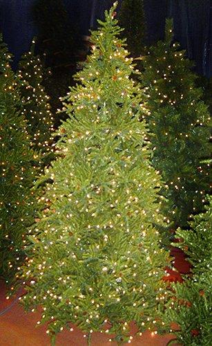 6.5' Pre-Lit Tannenbaum Artifical Christmas Tree - Clear Lights