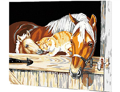 horses and cat Paint by number kit 16x20 inch Frameless