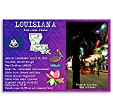 LOUISIANA STATE FACTS postcard set of 20 identical postcards. Post cards with LA facts and state symbols. Made in USA.