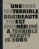 echange, troc Victoria Noorthoorn, Carlos Gamerro, Ruben Mira, Alejandro Tantanian, Collectif - Une terrible beauté est née : 11e biennale de Lyon