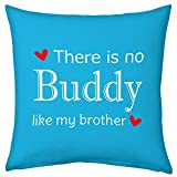 Bhaidooj Happy Diwali Gift Brother Sister Love Nobody Like My Brother 12X12 Printed PolySatin, Fibre Cushion Festive...