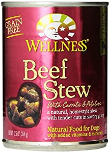 Wellness Natural Grain Free Wet Canned Dog Food, Beef Stew with Carrots and Potatoes, 12.5-Ounce Can (Pack of 12)