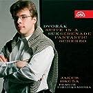 Dvorak / Suk: Orchestral Works
