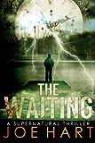The Waiting: A Supernatural Thriller