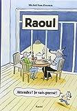 vignette de 'Raoul (Michel VAN ZEVEREN)'