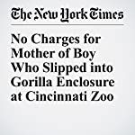 No Charges for Mother of Boy Who Slipped into Gorilla Enclosure at Cincinnati Zoo | Mike Mcphate