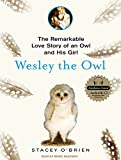 Stacey O'Brien Wesley the Owl: The Remarkable Love Story of an Owl and His Girl