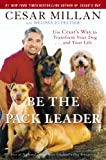 Be the Pack Leader: Use Cesar