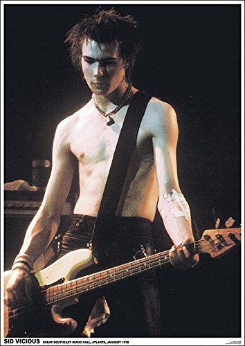 Sex Pistols Sid Vicious Poster Standard