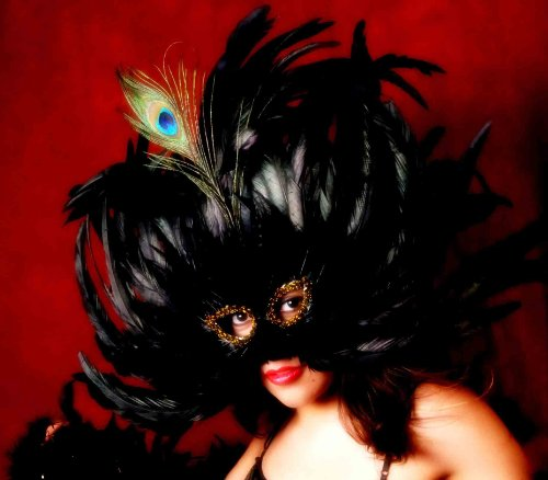 Goth Black Feather Mardi Gras Costume Mask Party Prom