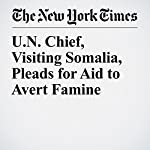U.N. Chief, Visiting Somalia, Pleads for Aid to Avert Famine   Hussein Mohamed,Sewell Chan