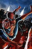 img - for Amazing Spider-man #1 Mhan VAR ANMN book / textbook / text book