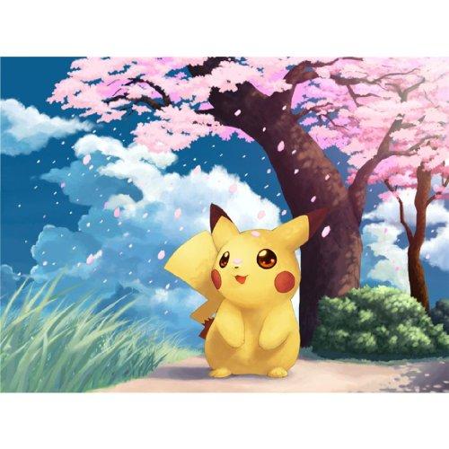 Pikachu-Poster-On-Silk-47cm-x-35cm-19inch-x-14inch-Cartel-de-Seda-14A1C1