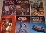 img - for Waterfowl Carving & Painting Collection 6 Volumes book / textbook / text book
