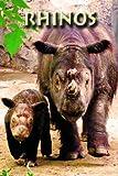 Rhinos (Zoo Kids) (English Edition)