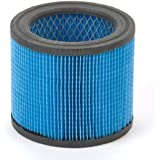 Shop-Vac 9039700 Ultra Web Small Cartridge Filter, Type BB