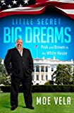 img - for Little Secret Big Dreams book / textbook / text book