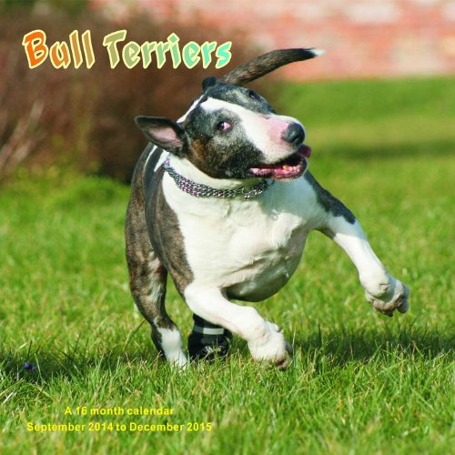 Bull Terriers Calendar - 2015 Wall calendars - Dog Calendars - Monthly Wall Calendar by Magnum