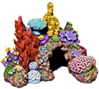 Exotic Environments Caribbean Living Reef Aquarium Ornament