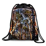 FUNKYLICIOUS Drawstring Polyester Door into the Forest Design (Multicolour)