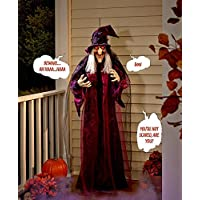 Hanging Talking Witch Halloween Scary House Prop Spooky Decoration