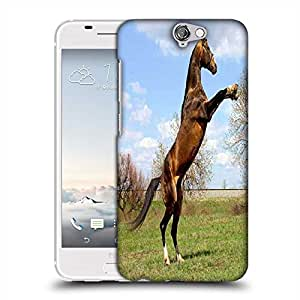 Snoogg Horse Standing Designer Protective Phone Back Case Cover For Asus Zenfone 6