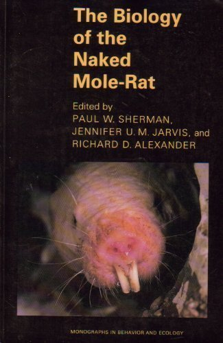 Naked mole rat social