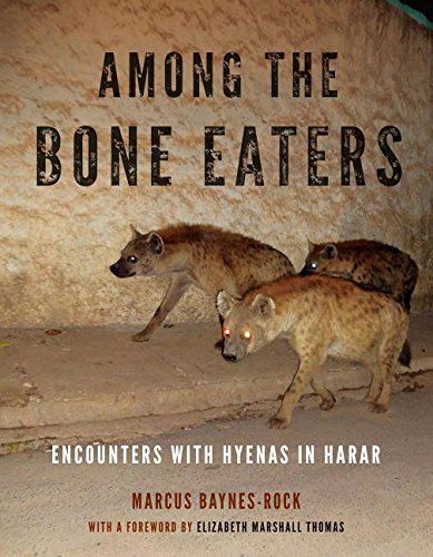 Among the Bone Eaters: Encounters with Hyenas in Harar (Animalibus: Of Animals and Cultures)
