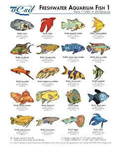 Arts crafts sewing sewing for Freshwater aquarium fish list