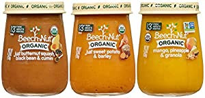 Beech-Nut Organic Stage 3 Baby Food Variety Pack, 4.25 Ounce (Pack of 10) from [Producer]