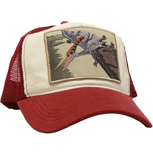 (キッズ)KIDS (カスターノ)CASTANO 恐竜刺繍ワッペンメッシュキャップ レッド(プテラノドン)