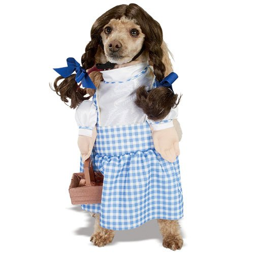Dorothy Wizard of