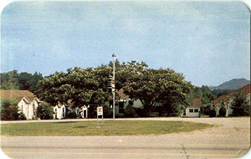 Chilhowee Tourist Court Knoxville, Tn Original Vintage Postcard