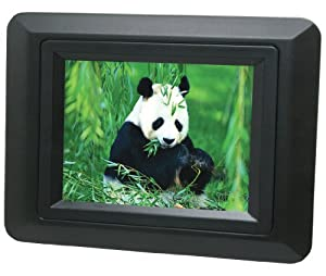 Curtis DPF350L-BLACK 3.5-Inch Digital Picture Frame (Black) by Curtis
