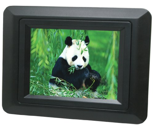 Curtis DPF350L-BLACK 3.5-Inch Digital Picture Frame (Black)