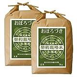 【28年度新米】 おぼろづき 玄米 10kg (5kg×2袋) 五つ星お米マイスター契約栽培米 平成28年度産 玄米