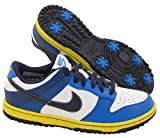 Nike Golf Dunk NG Boys Golf Shoe (Little Kid/Big Kid),White/Midnight Navy/Military Blue/Venom Green,5 M Us Big Kid