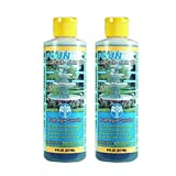 2 PACK - EasyCare FounTec Algaecide and Clarifier - 8 oz